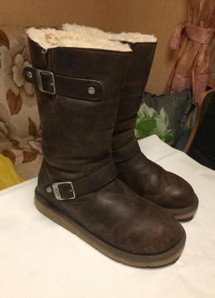 Сапоги ботинки угги ugg kensington