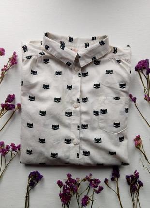 Стильная рубашка на девочку,блузка с котами,белая хлопковая школьная рубашка h&m