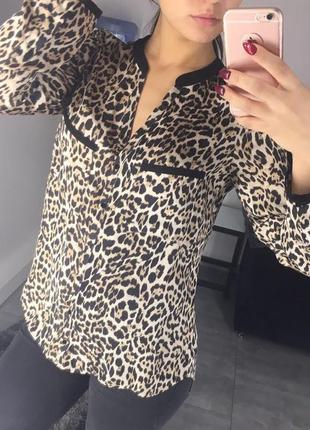 Блуза в леопардовый принт zara