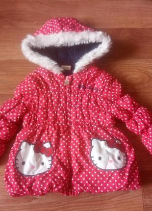 Куртка осень-весна 2-3 года курточка утепленная на меху с капюшоном удлиненная
