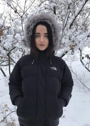 Пуховик the north face