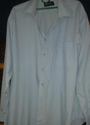 Рубашка голубого цвета,однотонная gino di milano