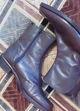 Женские зимние,кожаные сапоги,сапожки,ботинки,полу сапоги.бренд-eureka 37р.