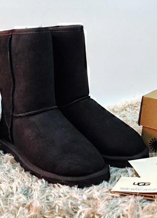 Черные оригинальные женские сапожки ugg australia classic - black