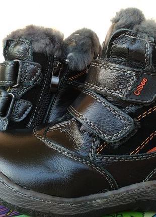Сапоги ботинки зимние на мальчика кожа цегейка 22,23 размер clibee