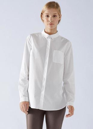 Блуза-рубашка р.40 евро tcm tchibo