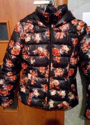 Зимняя куртка с наполнителем terranova