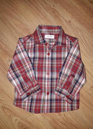 Крутая рубашечка на маленького модника  6-12 месяцев