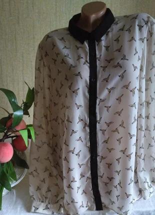 Легкая блуза, рубашка принт птички