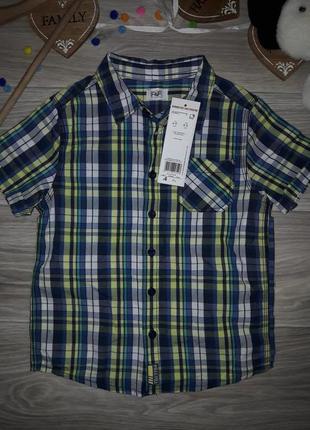 F&f рубашка 4-5 л 110 см хлопок сток