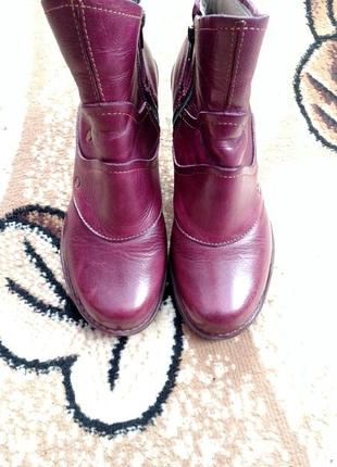 Ботинки, сапожки, черевики el naturalista