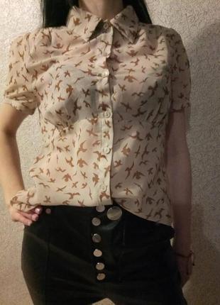 Брендовая блузка принт ласточки forever 21