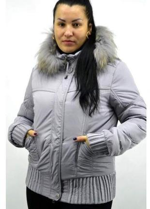 Акция !!! куртка зимняя на синтепоне .размеры: 42, 44, 46, 48,50