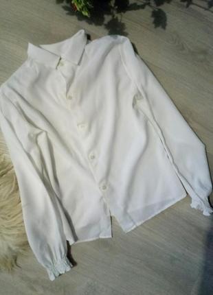 Бредовая  блузка duke3