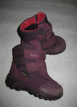 13 см стелька, зимние термо сапоги ботинки ecco, с гортексом экко