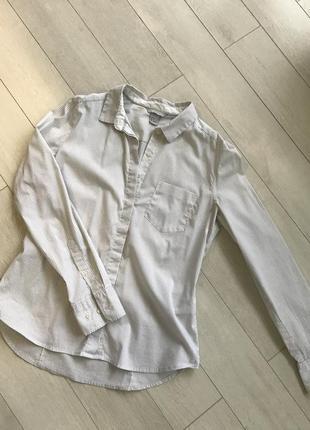 Рубашка базовая белая в полоску