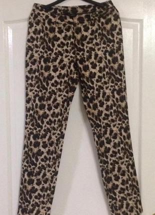 Трендовые леопардовые штаны esmara, новые!