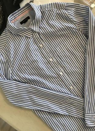 Базова сорочка в полоску amisu