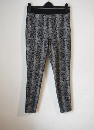 Стрейчевые брюки лосины легинсы