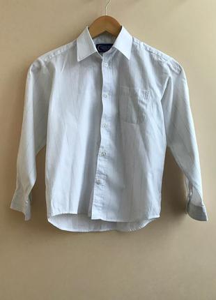 Белая рубашка в полоску classic tige