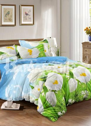 Комплекты постельного белья из сатина тюльпаны, полуторный
