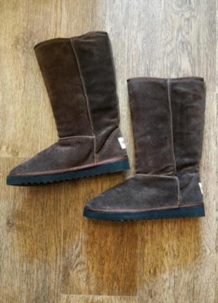 Коричневые зимние сапоги угги высокие тёплые коричневые inblu