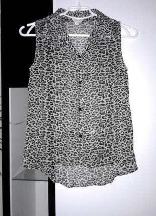 Леопардовая шифоновая рубашка miss e-vie