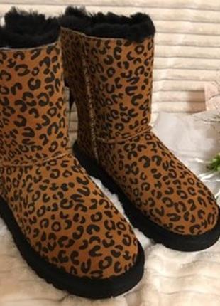 Леопардовые сапожки ugg - хит сезона!