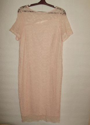Пудровое кружевное платье по фигуре/батал/16/50-52 размера