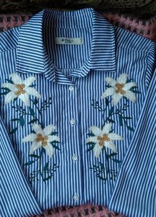 Женская рубашка в полосочку colin's