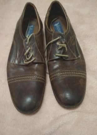 Мужские туфли venturini
