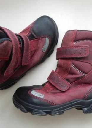 Зимние ботинки ecco 34р 22см