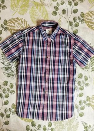 Фирменная рубашка в клетку cedarwood state