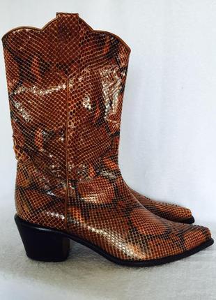 Сапоги казаки из 100% кожи питона-рептилии, носок не длинный,24,5 см по стельке