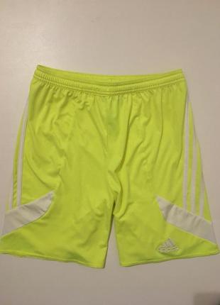 Идеальные шорты для занятий спортом