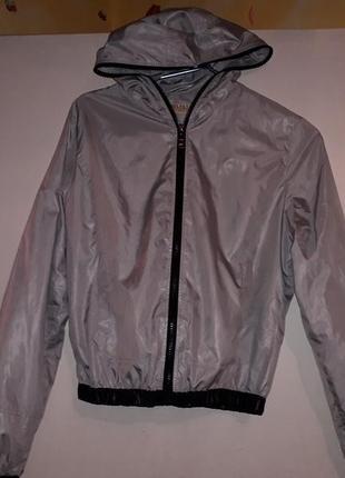 Ветровка спортивная куртка металик