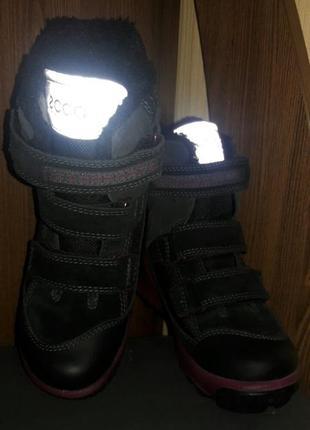 Зимние ботинки ессо biom hike 31 р
