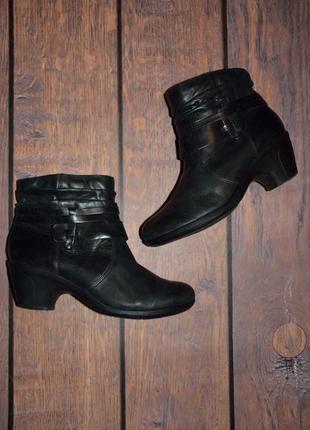 Демисезонные сапоги на каблуке hotter / кожа