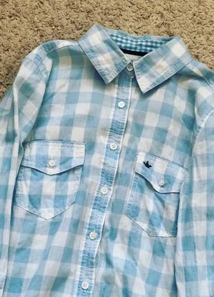 Нежная бело голубая рубашка из colin's