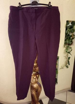 Новые,зауженные к низу брюки цвета марсала,54-56 р