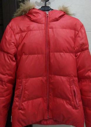 Зимняя куртка cotton