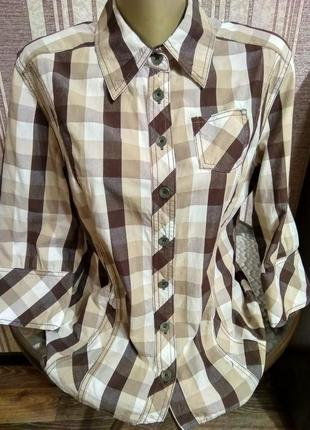 Cecil, брендовая рубашка