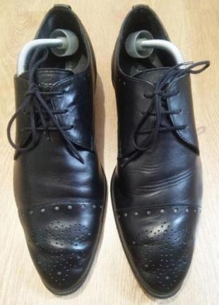 Черные мужские туфли strellson