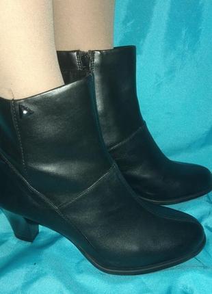 Новые кожаные демисезонные ботинки clark's р 37-37,5