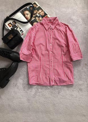 Розовая рубашка в белую полоску с коротким рукавом от vanfaack