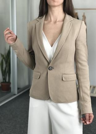 Бежевый пиджак massimo dutti 36-38
