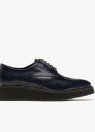 Туфли броги дерби massimo dutti размер 39