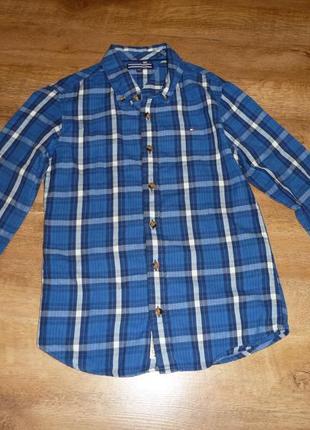 Рубашка tommy hilfiger на 10 лет рост 140 см