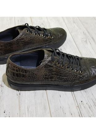 Кеды мужские oscar set зел.кож/крокодил1 фото