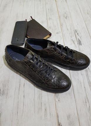 Кеды мужские oscar set зел.кож/крокодил3 фото